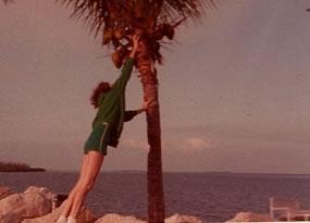 humanual_coconut_tree